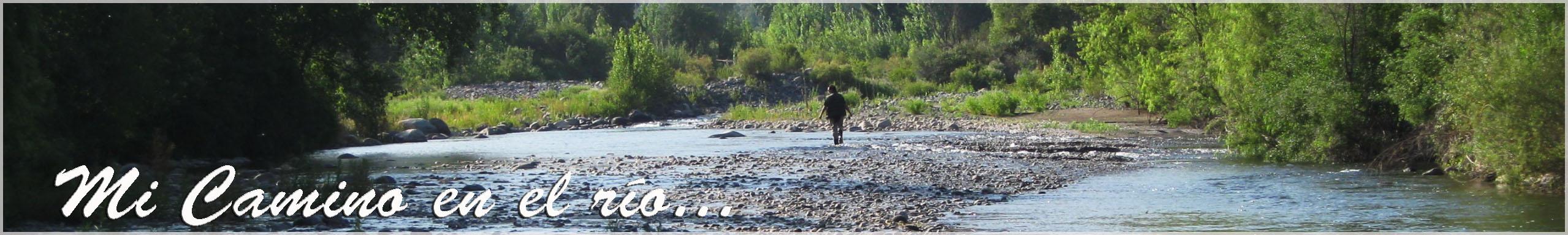 Mi camino en el río...