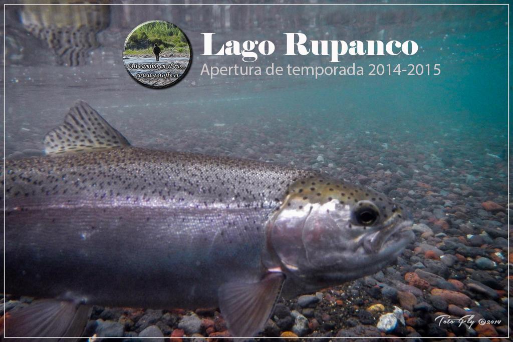 Apertura Lago Rupanco 2014-2015-64